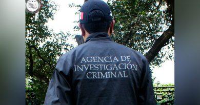 Rescatan en Chiapas a 244 loros cara blanca; hay un detenido