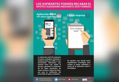 Inicia plazo para que aspirantes a Candidaturas Independientes recaben apoyo ciudadano